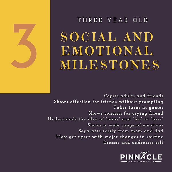 3 Year Old Social Milestones