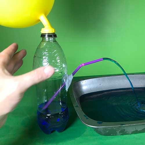 Stem water bottle