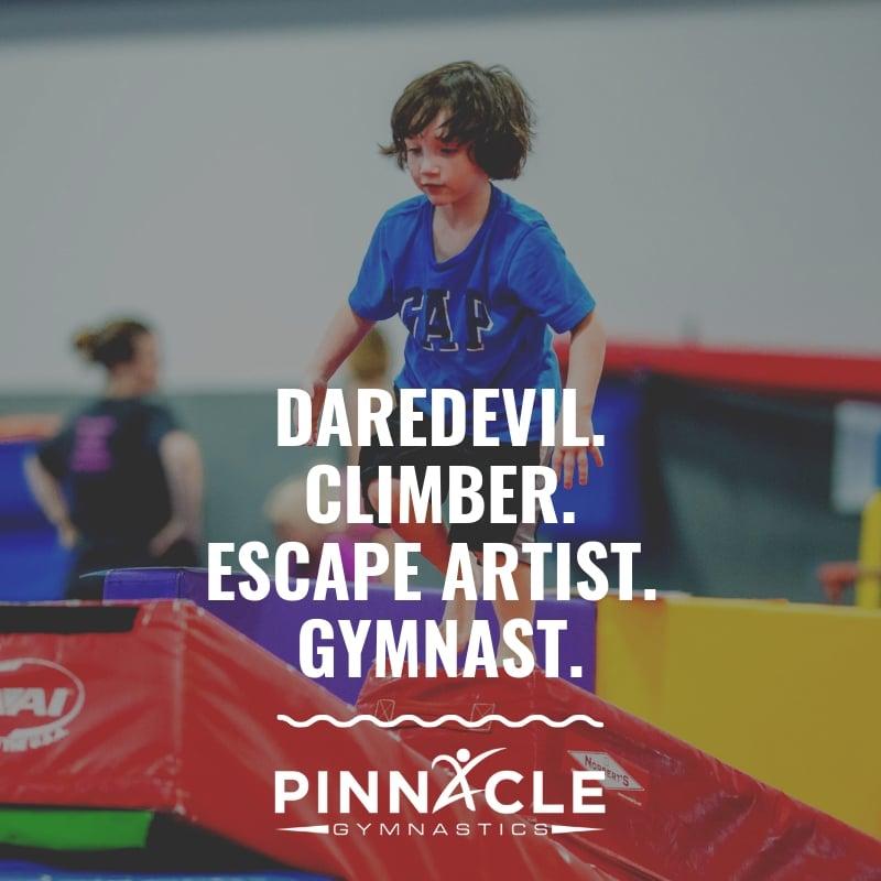 Daredevil. Climber. Escape Artist. Gymnast.
