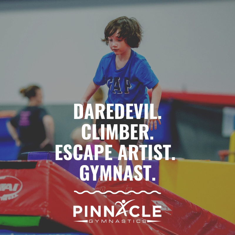 Daredevil. Climber. Escape Artist. Gymnast.