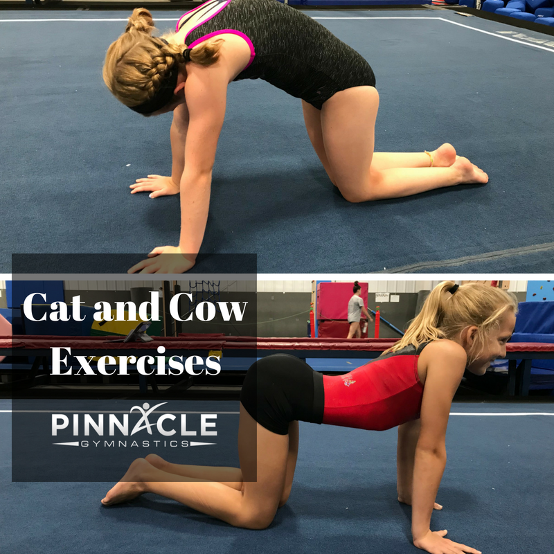 Exercises to improve a back handspring at home