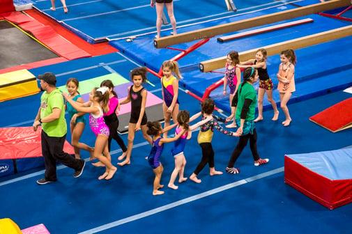 love of gymnastics