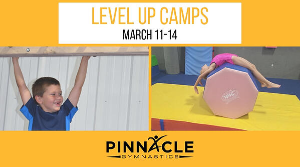 Level up camps