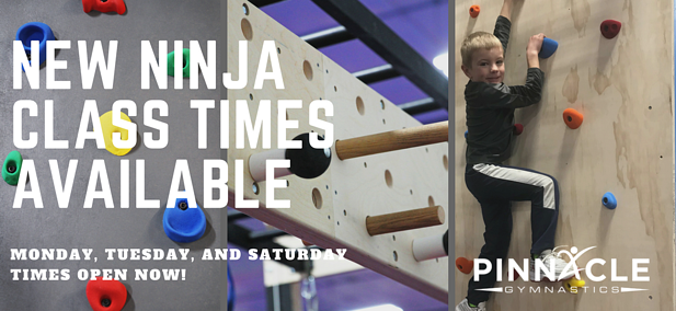 New Youth Agility Classes Available