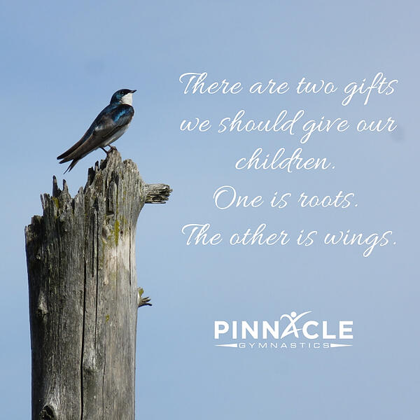 There are two gifts we should give our children. One is roots. The other is wings.